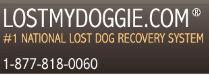 LostMyDoggie