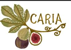 Fig of Caria Coupon code